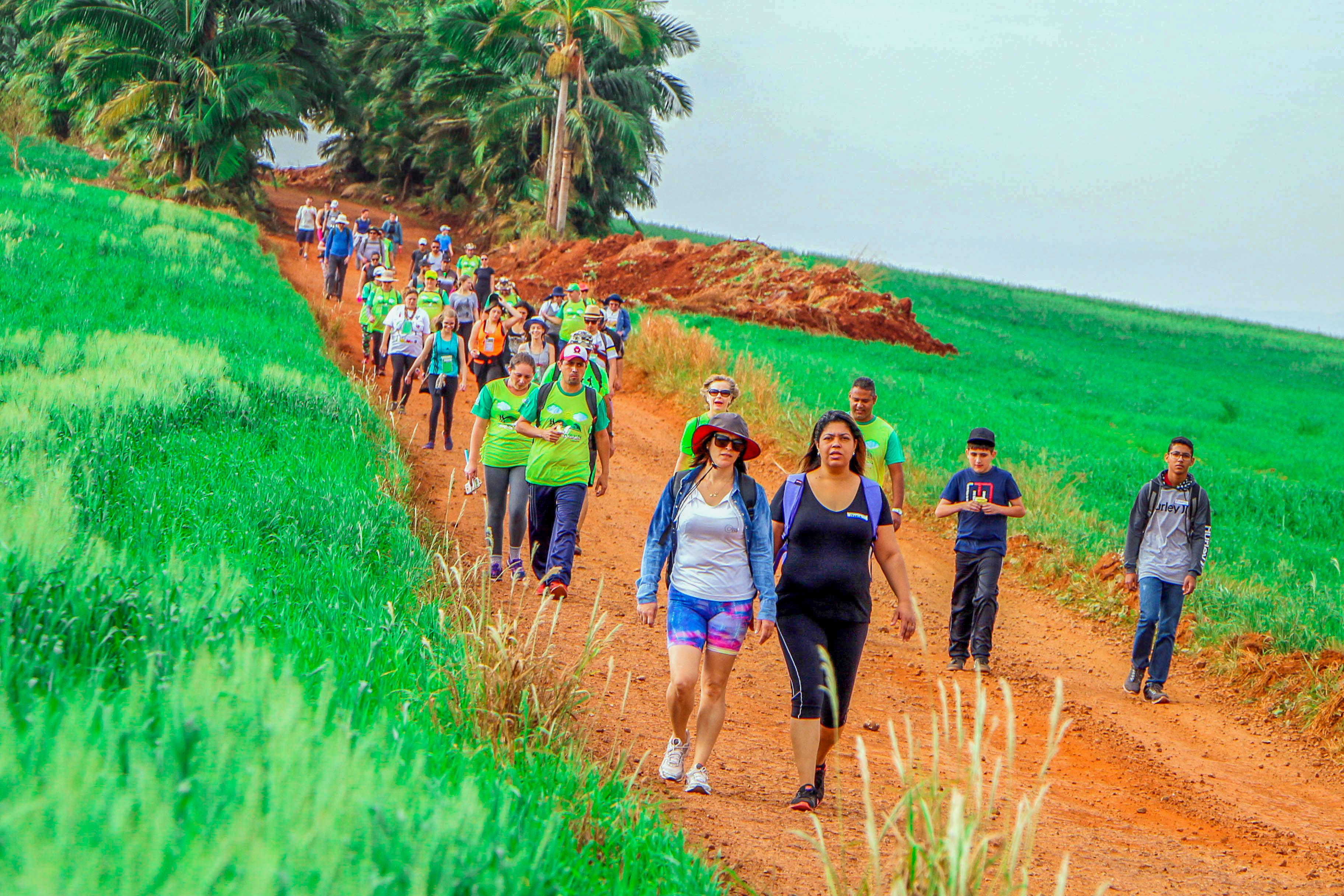o ano passado foram 410 participantes de Apucarana e de cidades de várias regiões do estado. Foto: Josias Profeta