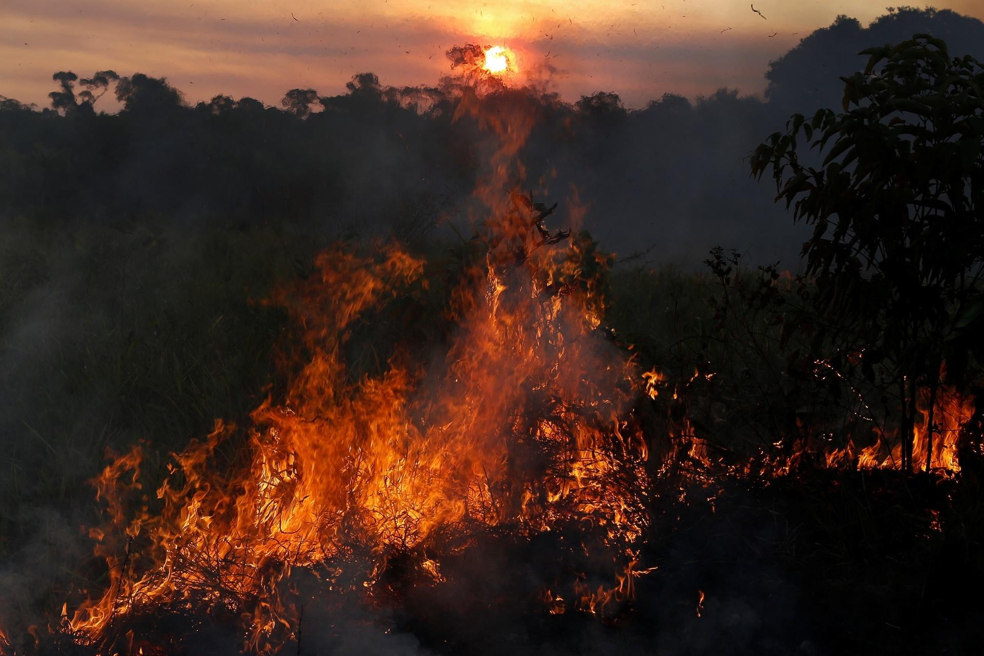 O Paraná vai atuar no combate aos focos de incêndio na Região Amazônica.