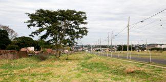 Terrenos na avenida Nildo Ribeiro da Rocha onde será instalado o Parque de TI. Foto: Aldemir de Moraes/PMM