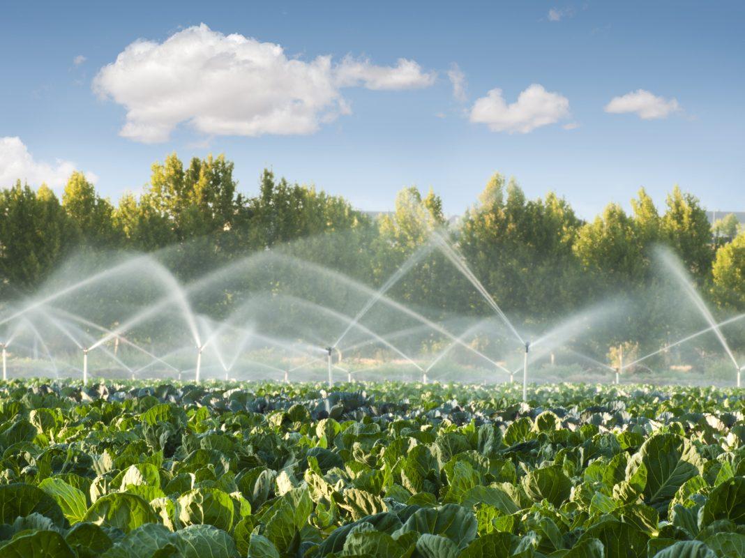 Fórum de Irrigação dirigido a produtores e técnicos da região noroeste
