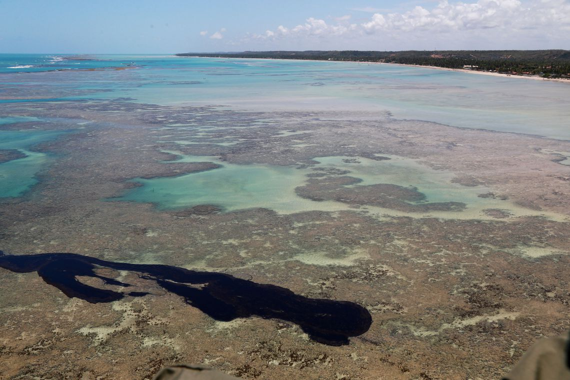 Pesquisa mostrou que pescado não tem níveis significativos de petróleo