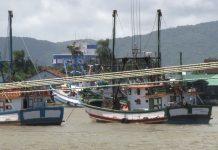Pesca das espécias fica proibida até 15 de março