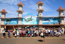 Cerca de 200 idosos vinculados aos Centros de Convivência da Secretaria de Assistência Social e Cidadania (Sasc), estão se divertindo nesta quarta, 13, no parque aquático.