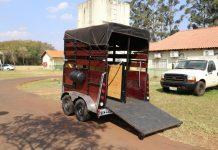 O manejo de animais de grande porte, como cavalos, é trabalho recorrente da Prefeitura de Maringá, por meio da Secretaria de Meio Ambiente e Bem-Estar Animal (Sema) e da Secretaria de Serviços Públicos (Semusp).
