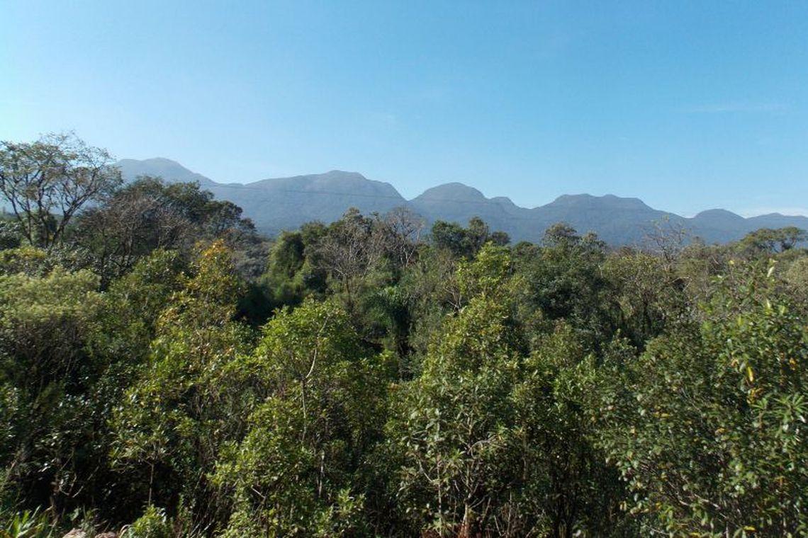 Segundo o coordenador do Programa de Monitoramento da Amazônia e Demais Biomas do Inpe, Cláudio Almeida, os primeiros dados deverão ser divulgados ainda este ano