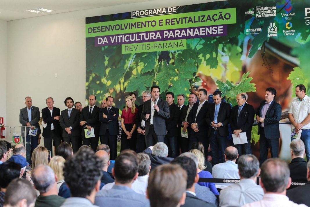 Lançado pelo governador Ratinho Junior, programa Revitis é uma resposta à falta de parreiras para atender a indústria local de sucos e vinhos.