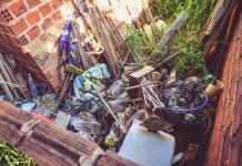 O município está preocupado com a situação da dengue em Paranavaí. Isto porque, só nos primeiros oito dias do ano, mais de 730 pessoas foram diagnosticadas com suspeita de dengue nas UBSs (Unidades Básicas de Saúde)