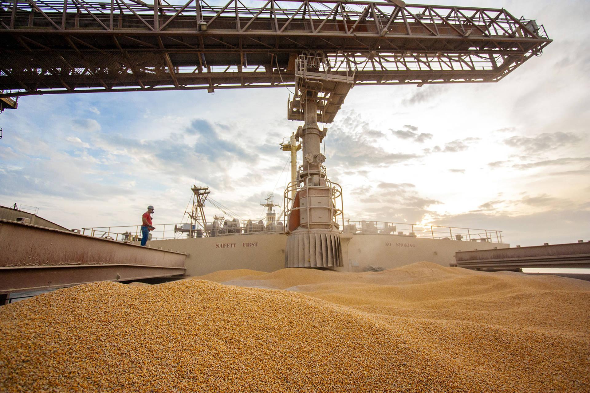 Corredor de exportação do porto paranaense movimenta 20,23 milhões de toneladas superando a marca histórica registrada em 2018, de 19,76 milhões