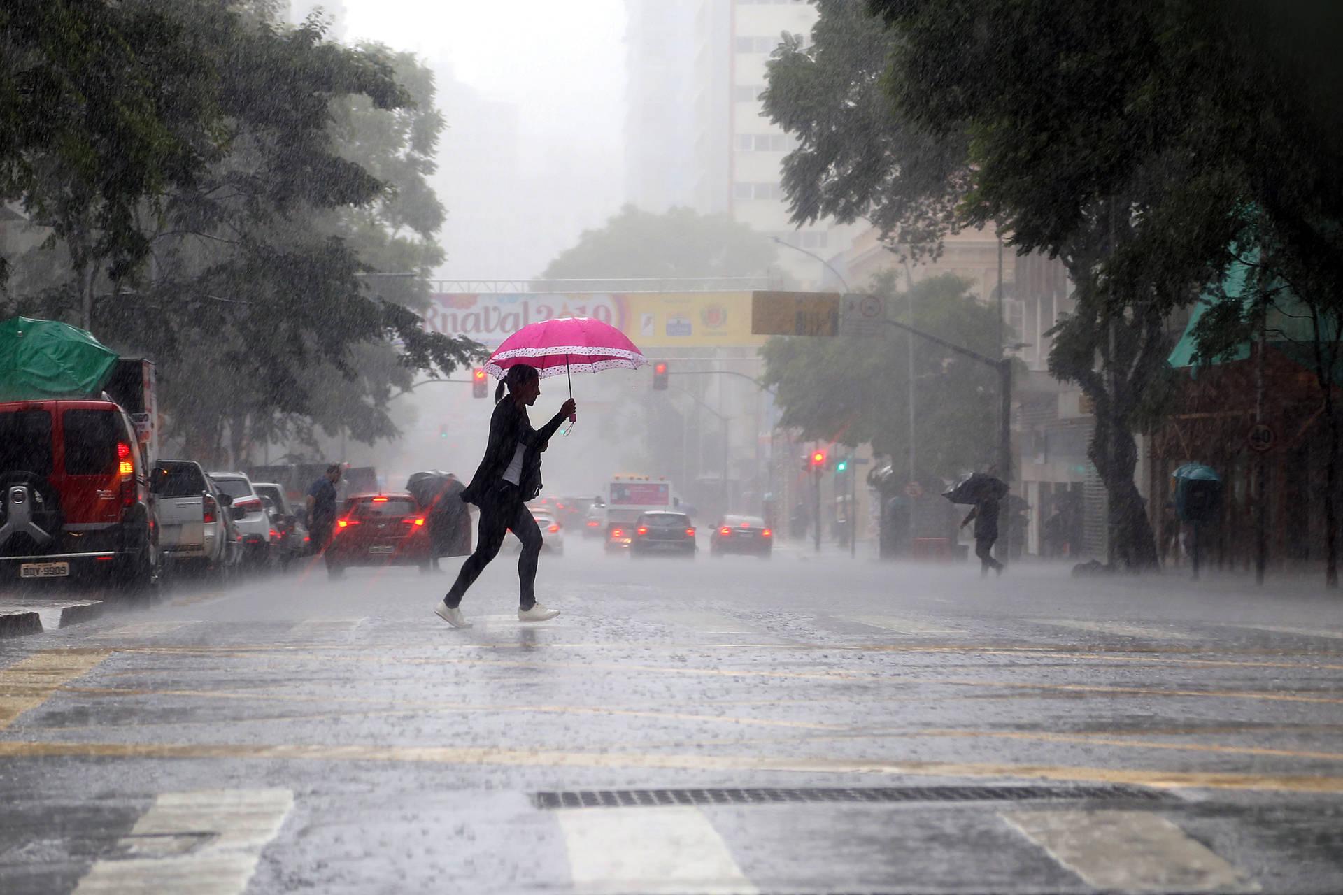 Uma média dos últimos cinco anos aponta que 49% dos casos confirmados da doença ocorreram no primeiro trimestre, quando há maior ocorrência das chuvas. Confira os cuidados para reduzir os riscos.