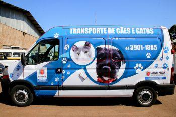 Em três anos, 71 feiras de adoção garantiram lar para 788 cachorros e gatos.