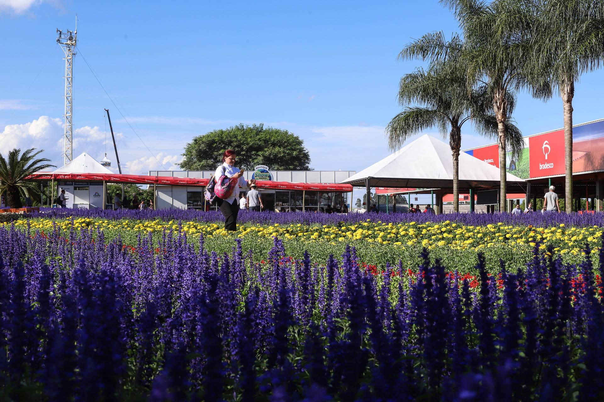 A edição 2020 da feira promovida pela Coopavel, em Cascavel, contará com a participação de secretarias de Estado, autarquias e empresas públicas